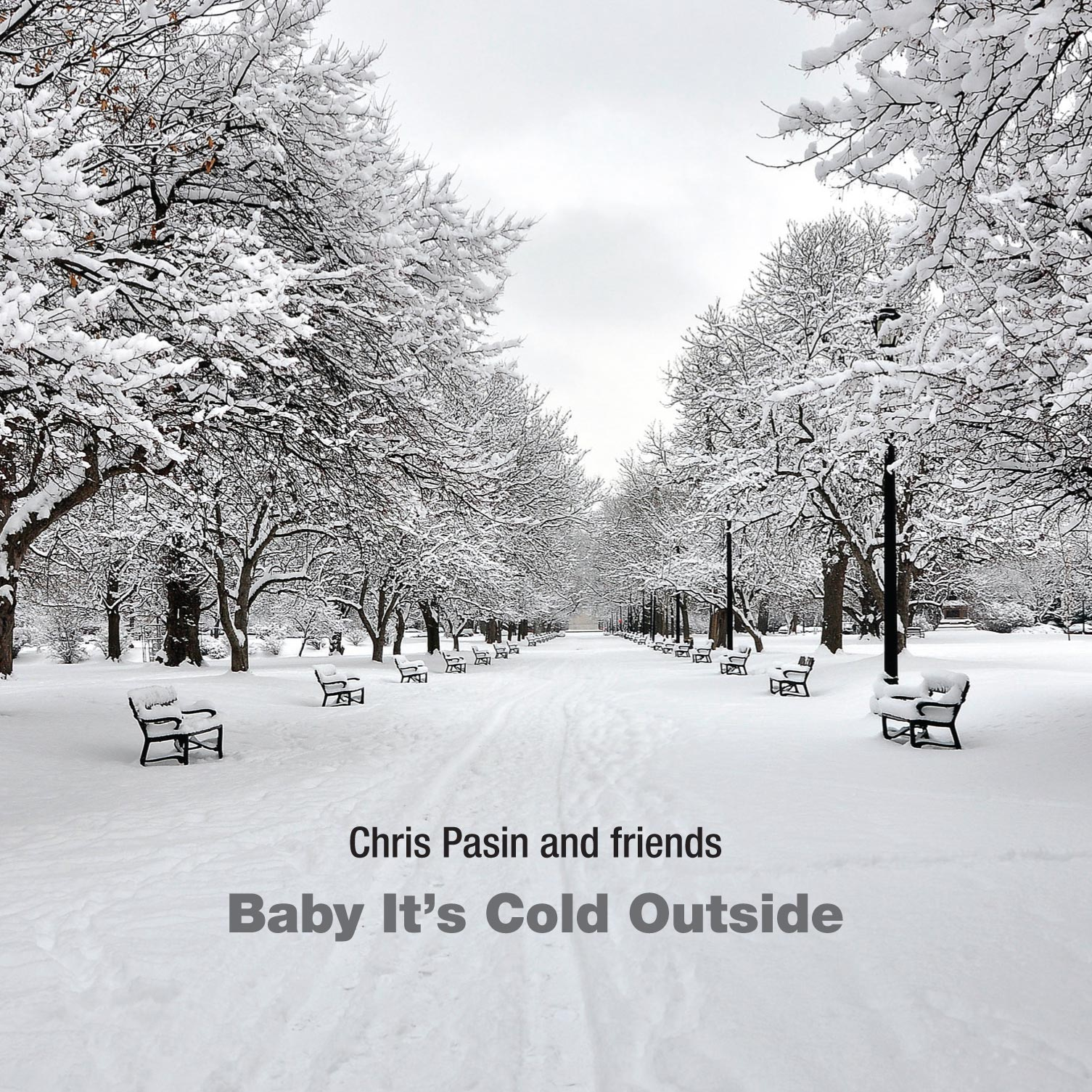 Baby It\'s Cold Outside | Chris Pasin
